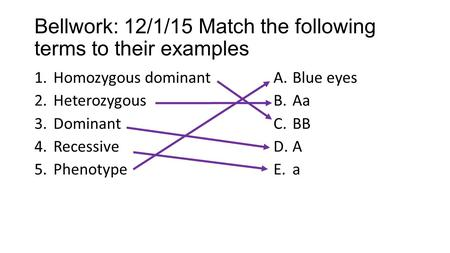 Bellwork: 12/1/15 Match the following terms to their examples 1.Homozygous dominant 2.Heterozygous 3.Dominant 4.Recessive 5.Phenotype A.Blue eyes B.Aa.