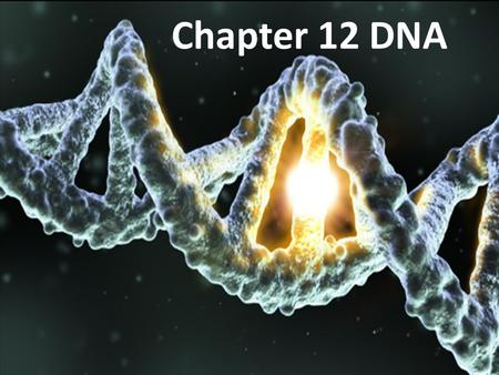 DNA Chapter 12 DNA. Mendel's work and experiments created more questions and sparked scientists to start researching heredity with a more molecular approach.