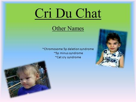 Cri Du Chat Other Names ~Chromosome 5p deletion syndrome ~5p minus syndrome ~Cat cry syndrome.