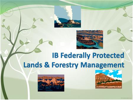 World Land Use Types of Protected Lands Department of the Interior: Bureau of Land Management (BLM) Fish & Wildlife Service (USFWS) National Forests.