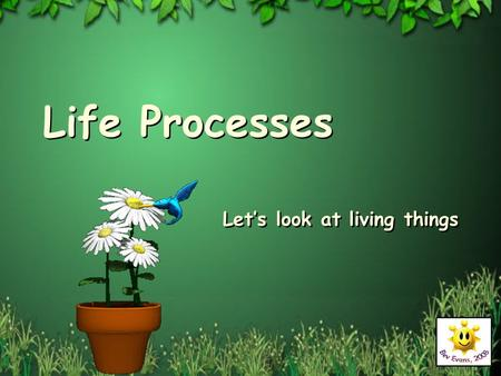 Life Processes Let's look at living things. Diversity of Living things.