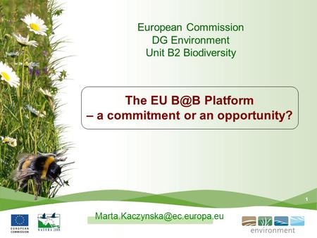 1 The EU Platform – a commitment or an opportunity? European Commission DG Environment Unit B2 Biodiversity