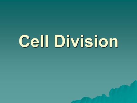 Cell Division. In Prokaryotes…  Reproduce through Binary Fission  Chromosome copies itself  Cell grows larger  Cell divides, with 1 copy of chromosome.