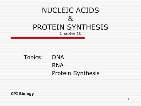 1 NUCLEIC ACIDS & PROTEIN SYNTHESIS Chapter 10 Topics:DNA RNA Protein Synthesis CPI Biology.