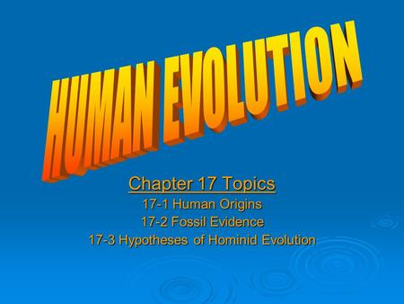 Chapter 17 Topics 17-1 Human Origins 17-2 Fossil Evidence 17-3 Hypotheses of Hominid Evolution.