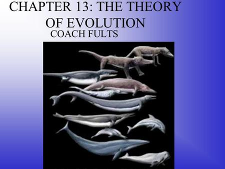CHAPTER 13: THE THEORY OF EVOLUTION COACH FULTS. Darwin Proposed a Mechanism for Evolution The idea that life evolves may have been 1 st proposed by Lucretius,