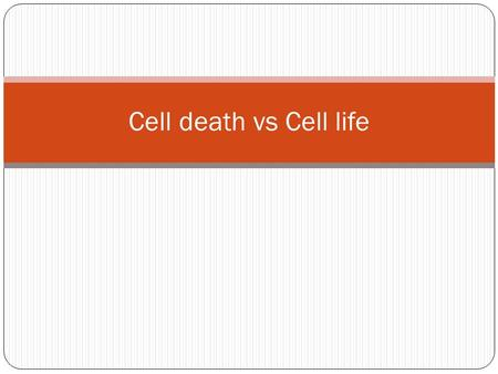 Cell death vs Cell life. Characteristic morphologic features of apoptosis Extr signal Intr signal nucleus DNA fragmentation (formation of nucleosomal.