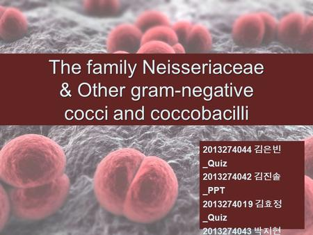 The family Neisseriaceae & Other gram-negative cocci and coccobacilli 2013274044 김은빈 _Quiz 2013274042 김진솔 _PPT 20132740 1 9 김효정 _Quiz 2013274043 박지현 _PPT.