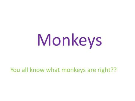 Monkeys You all know what monkeys are right??. But do you know this one???