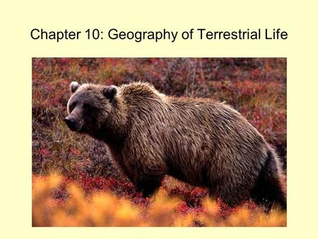 Chapter 10: Geography of Terrestrial Life. © 2013 Pearson Education, Inc. Interstate Biogeography Human activities can alter distribution of plants and.