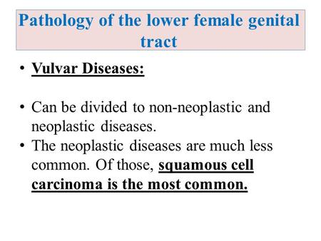 Pathology of the lower female genital tract Vulvar Diseases: Can be divided to non-neoplastic and neoplastic diseases. The neoplastic diseases are much.