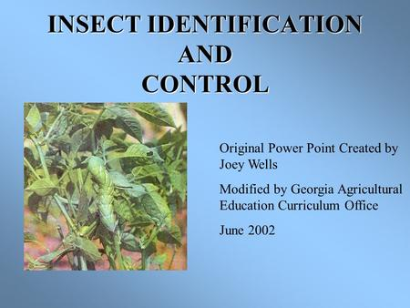 INSECT IDENTIFICATION AND CONTROL Original Power Point Created by Joey Wells Modified by Georgia Agricultural Education Curriculum Office June 2002.