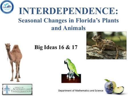 INTERDEPENDENCE: Seasonal Changes in Florida's Plants and Animals Big Ideas 16 & 17.