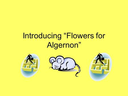 "Introducing ""Flowers for Algernon"". Instructions Read each slide thoroughly. Then copy and paste the questions in a Word document. Answer each question."