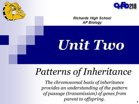 1 Unit Two Patterns of Inheritance Richards High School AP Biology The chromosomal basis of inheritance provides an understanding of the pattern of passage.