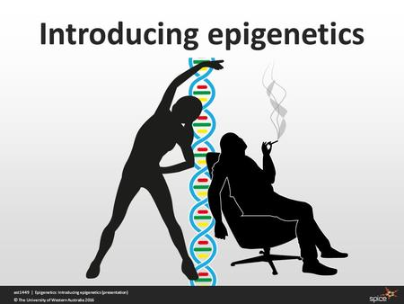 Introducing epigenetics ast1449 | Epigenetics: Introducing epigenetics (presentation) © The University of Western Australia 2016.