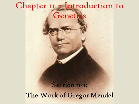 Section 11-1: The Work of Gregor Mendel