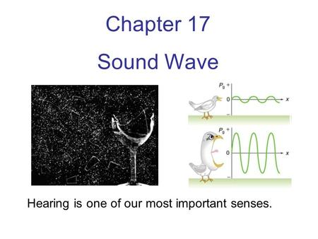Chapter 17 Sound Wave Hearing is one of our most important senses.