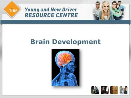 Brain Development. Overview: > Describe brain development > Behavioural effects of brain development > Attitudes and concerns > Solutions.