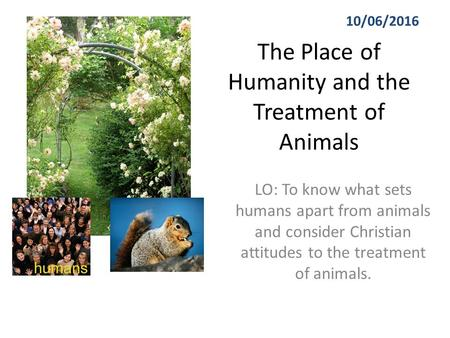 The Place of Humanity and the Treatment of Animals LO: To know what sets humans apart from animals and consider Christian attitudes to the treatment of.
