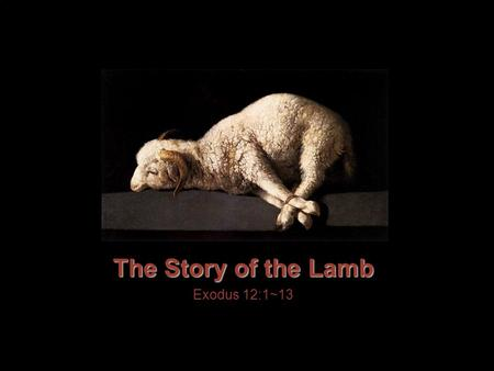 "The Story of the Lamb Exodus 12:1~13. John 1:29 The next day John saw Jesus coming toward him and said, ""Look, the Lamb of God, who takes away the sin."