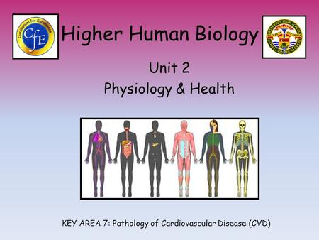 Higher Human Biology Unit 2 Physiology & Health KEY AREA 7: Pathology of Cardiovascular Disease (CVD)
