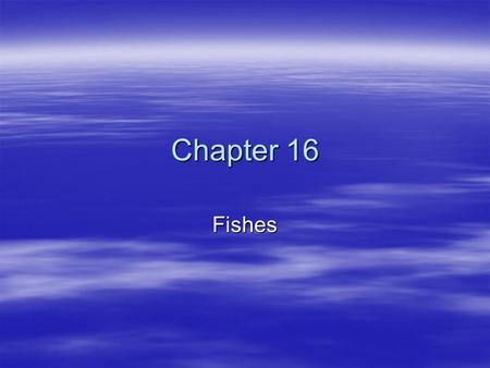 Chapter 16 Fishes. 2 Fish  Fish/fishes  Characteristics: –gill breathing –ectothermic –aquatic –fins –scales on epidermis –larger the fish, faster it.