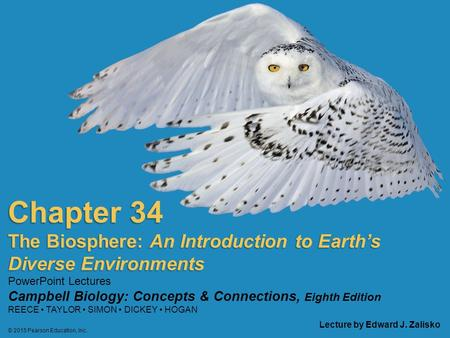 campbell biology chapter Pearson campbell biology 7th edition for new exam 41 organic chemistry in the study of carbon compounds 58-59 51 most macromolecules are polymers, built from.
