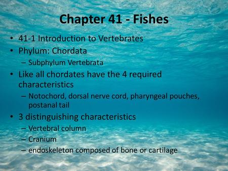 Chapter 41 - Fishes 41-1 Introduction to Vertebrates Phylum: Chordata – Subphylum Vertebrata Like all chordates have the 4 required characteristics – Notochord,