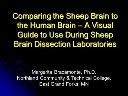 Comparing the Sheep Brain to the Human Brain – A Visual Guide to Use During Sheep Brain Dissection Laboratories Margarita Bracamonte, Ph.D. Northland Community.