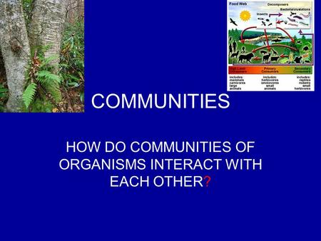 COMMUNITIES HOW DO COMMUNITIES OF ORGANISMS INTERACT WITH EACH OTHER?
