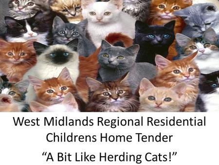 "West Midlands Regional Residential Childrens Home Tender ""A Bit Like Herding Cats!"""
