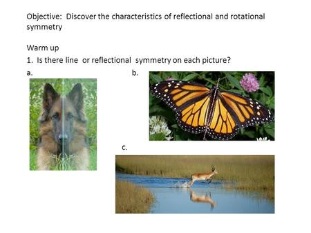 Objective: Discover the characteristics of reflectional and rotational symmetry Warm up 1. Is there line or reflectional symmetry on each picture? a.