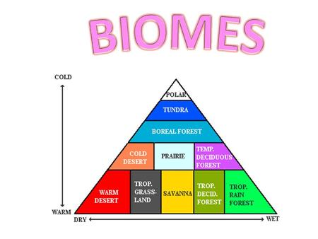 IX. Biomes Biomes = a large group of ecosystems with similar climates and organisms. Two factors that will determine which biome will be dominant on.