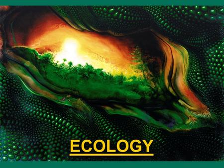 ECOLOGY. What is Ecology? Ecology is the study of interactions between organisms and their environment. Ecology is the study of interactions between organisms.