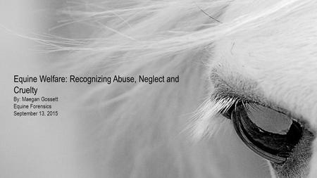 Equine Welfare: Recognizing Abuse, Neglect and Cruelty By: Maegan Gossett Equine Forensics September 13, 2015.