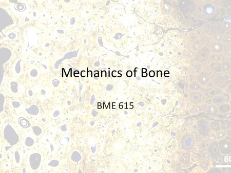 Mechanics of Bone BME 615. Why study bone mechanics? Interesting Mechanical Properties In vivo load leads to complex stress distributions Why Test Bone?