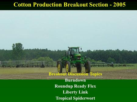 Cotton Production Breakout Section - 2005 Breakout Discussion Topics Burndown Roundup Ready Flex Liberty Link Tropical Spiderwort.
