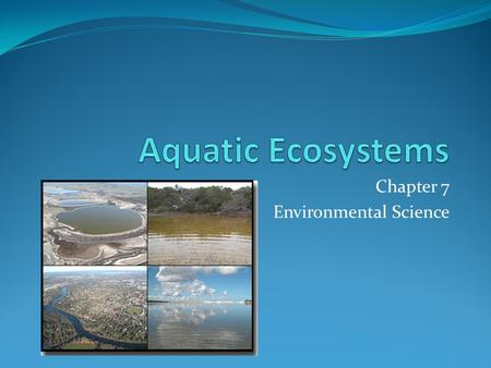 Chapter 7 Environmental Science. Freshwater Ecosystems.