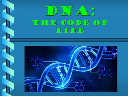 DNA: the code of life. A. DNA  Contains the genetic information for cells to make proteins. 1)Proteins determine a variety of traits, from hair color.