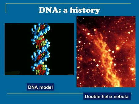 DNA: a history DNA model Double helix nebula. Griffith experiment: 1928 A heat-killed lethal strain of bacteria was added to a non-lethal strain. The.