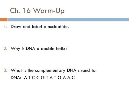 Ch. 16 Warm-Up 1.Draw and label a nucleotide. 2.Why is DNA a double helix? 3.What is the complementary DNA strand to: DNA: A T C C G T A T G A A C.
