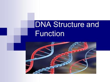 DNA Structure and Function. What is DNA? DeoxyriboNucleic Acid DNA is a Nucleic Acid The main job of DNA is to make PROTEINS. Proteins build your body,