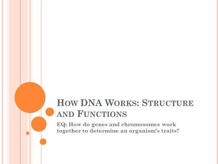 H OW DNA W ORKS : S TRUCTURE AND F UNCTIONS EQ: How do genes and chromosomes work together to determine an organism's traits?