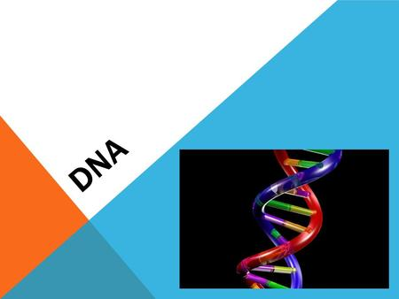 DNA. An organism's genetic material Located on chromosomes Genes are segments on DNA Contains information needed for an organism to grow, maintain itself,