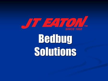 Bedbug Solutions. Bedbug Basics  Temporary external parasites  Reddish-brown in color after a blood meal  Adults are about the size of an apple seed.