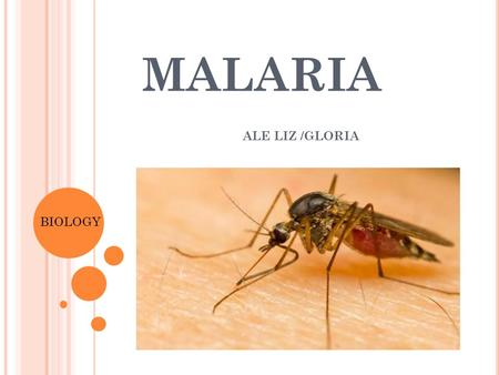 MALARIA ALE LIZ /GLORIA BIOLOGY. P ATHOGEN Malaria is caused by single-celled organisms, called protozoans, of the genus Plasmodium. Different forms of.