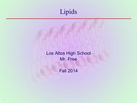 Lipids Los Altos High School Mr. Free Fall 2014 1.