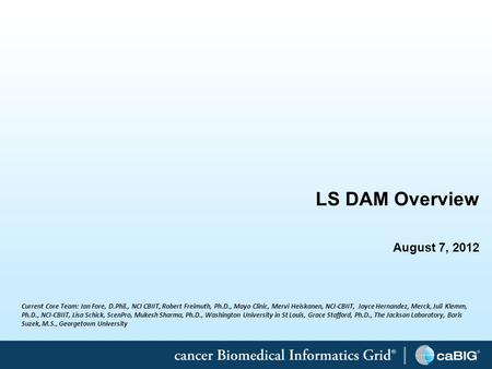 1 LS DAM Overview August 7, 2012 Current Core Team: Ian Fore, D.Phil., NCI CBIIT, Robert Freimuth, Ph.D., Mayo Clinic, Mervi Heiskanen, NCI-CBIIT, Joyce.