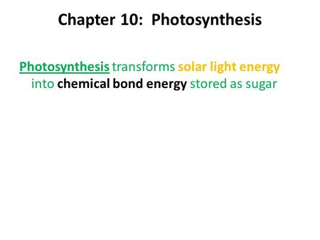 Chapter 10: Photosynthesis Photosynthesis transforms solar light energy into chemical bond energy stored as sugar.